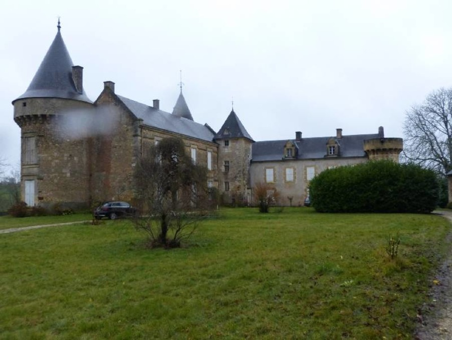 Les Eyzies de Tayac Sireuil - Slott till salu