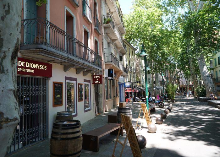 Nyrenoverat hus i Ceret uthyres i Pyreneerna