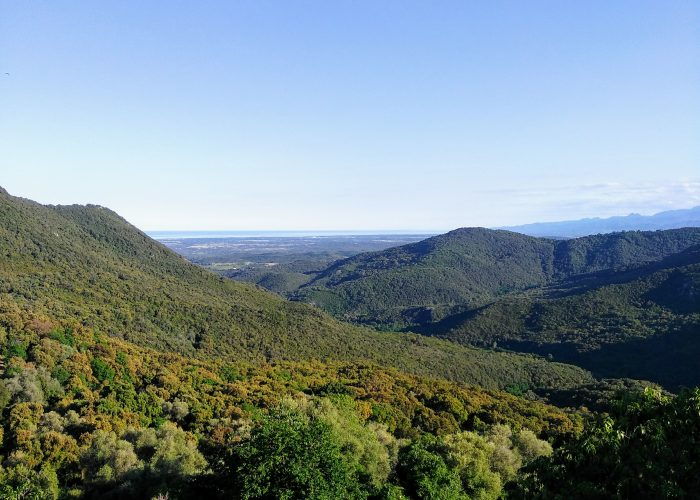 Apartment for sale in the Beautiful village of Tox in Corsica! Lägenhet till salu i Korsika!